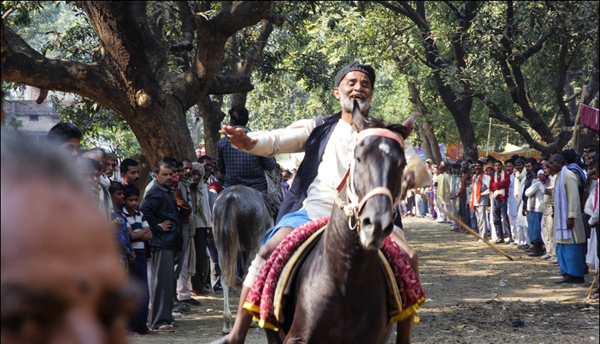 The horse mela. Photo: Anirban D Choudhury