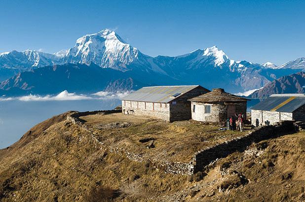 Nangi village. Photos: Himachal Education Foundation website