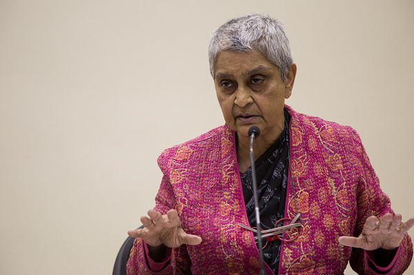 The highly regarded literary critic Gayatri Chakravorty Spivak, whose patronage of postcolonial and subaltern studies was effective because it was recognisable, and digestible, to the US audience. Photo: Rosa Luxemburg-Stiftung / Flickr