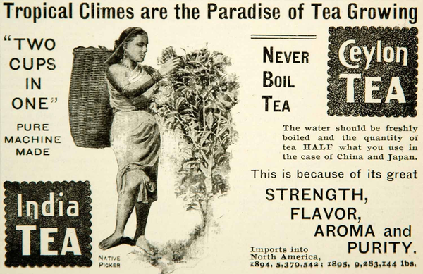 A 1896 print advertisement for Ceylon Tea and India Tea. Photo credit: periodpaper.com
